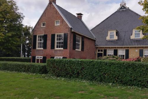 jorrit-hoekstra-tuinverzorging-tuinonderhoud-haag-beukhaag-knippen